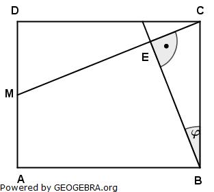 Realschulabschluss Pflichtteilaufgaben Trigonometrie Aufgabengraphik P22011/© by www.fit-in-mathe-online.de