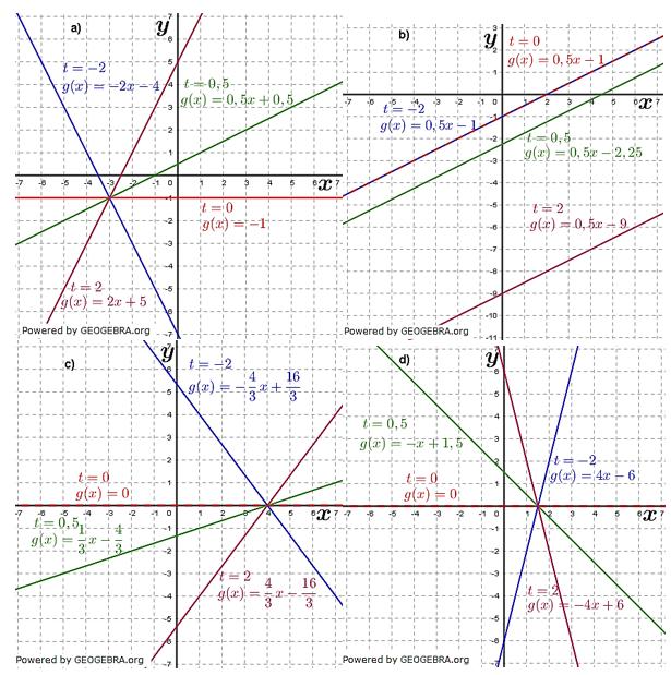 Lineare Funktionen der Funktionsklassen. Lösungen zum Aufgabensatz 1 Blatt 3/3 Expert Bild1 /© by www.fit-in-mathe-online.de)