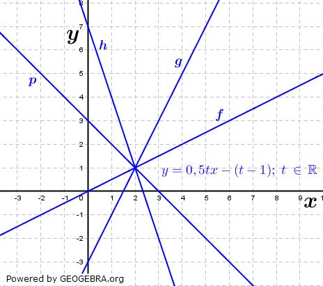 Die Abbildung zeigt das Schaubild von ft mit ft (x)=0,5tx-(t-1);x ∈ R  für verschiedene Werte von t. Ordne jeder Geraden einen Parameter zu. (Grafik A330201 im Aufgabensatz 2 Blatt 3/3 Expert zu linearen Funktionen in den Funktionsklassen) /© by www.fit-in-mathe-online.de)