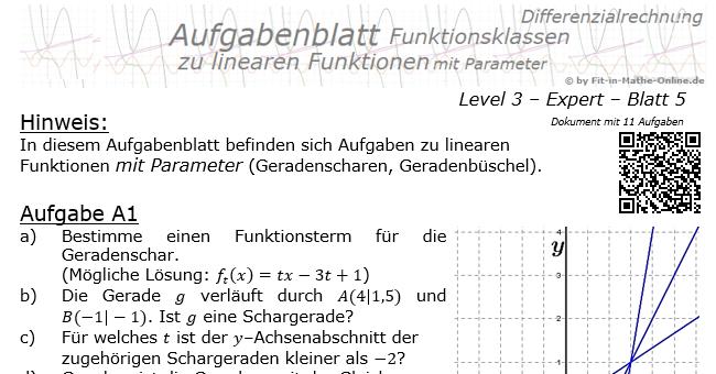lineare funktionen mit parameter 3 5 fit in mathe. Black Bedroom Furniture Sets. Home Design Ideas