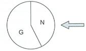 Ein Glücksrad hat die Felder G und N. Das Feld G erscheint mit der Wahrscheinlichkeit 0,6 und das Feld N mit der Wahrscheinlichkeit 0,4. (Grafik A221501 im Aufgabensatz 15 Blatt 2/2 Fortgeschritten zur Binomialverteilung/© by www.fit-in-mathe-online.de)
